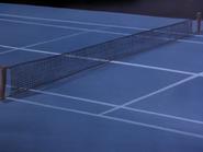 Peltpn Manor tennis court