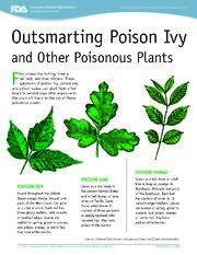 Poison Ivy FDA Guide
