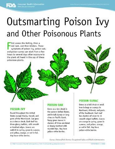 File:Poison Ivy FDA Guide.jpg