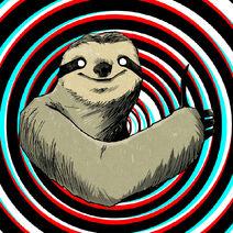 More amazing sloth