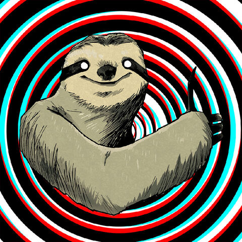 File:More amazing sloth.jpg