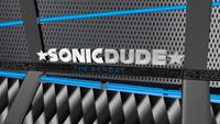 The SonicDude Report Screencap
