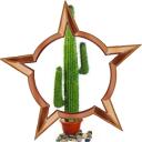 File:Badge-17-2.png