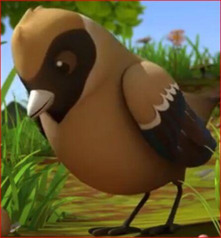 File:The Bird (MTB).jpg