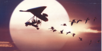 Opening To Fly Away Home 1996 Theatre