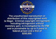 FBI Anti-Piracy Warning screen (with White Helvetica Bold Text)