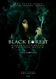 2013 - Hansel & Gretel Get Baked Movie Poster (aka Black Forest - Hansel and Gretel and the 420 Witch)