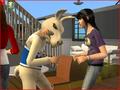 Thumbnail for version as of 05:26, March 23, 2008