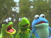 Kermit's Swamp Years VHS and DVD Trailer