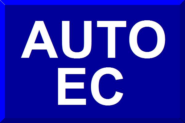 File:Bandeirinha Auto Esporte.png