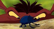 Pumbaa Looking At A Beetle