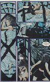 Batgirl 14 11