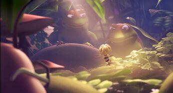 Frogs (MTBM)