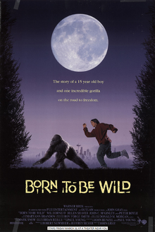Born To Be Wild (1995) Poster