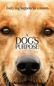 2017 - A Dog's Purpose Movie Poster