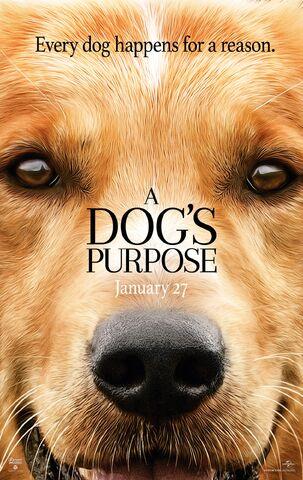 File:2017 - A Dog's Purpose Movie Poster.jpg