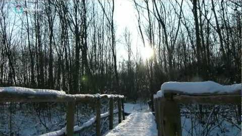 De eerste sneeuw-vrijbroek Mechelen