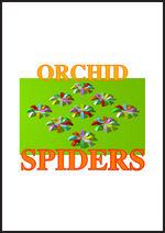 Gimyckoorchidspiders