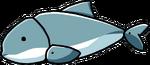 Porpoise