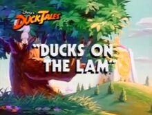 DucksontheLam - 04