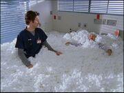 4x23 Cotton Balls