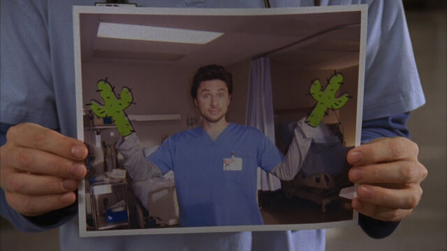 File:8x7 cactus hands.jpg