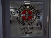 5x1 Sacred Heart Horse Hospital