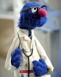 File:Grover.jpg