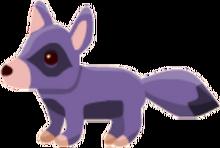 RaccoonDog