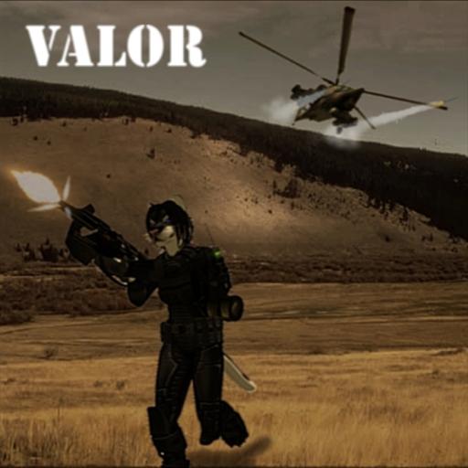 Valor Poster
