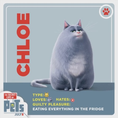 File:Chloe card.jpg