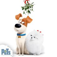Max and gidget christmas