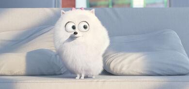 The-secret-life-of-pets-movie-review-gidget-dog-jenny-slate-2016-02