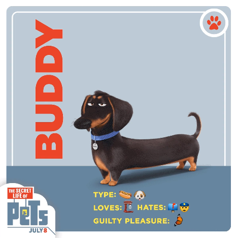 File:Buddy card.png
