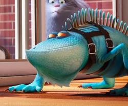 Germo lizard