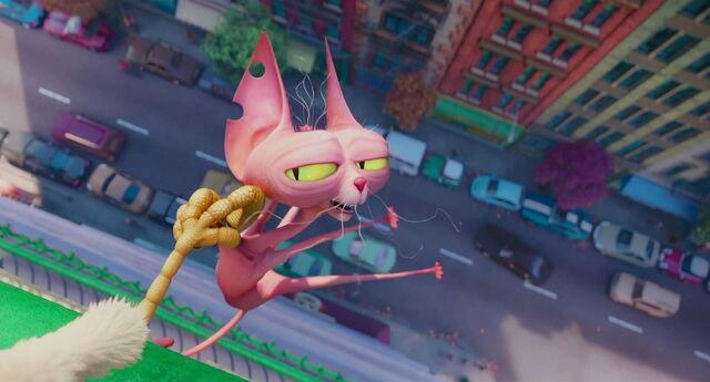 File:I'm-a-cat.jpg