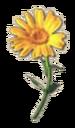 Crafting Item Flower