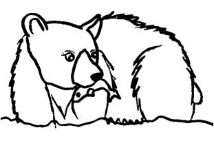 Grizzlycharartfemale