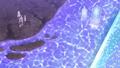 Thumbnail for version as of 03:22, September 6, 2014