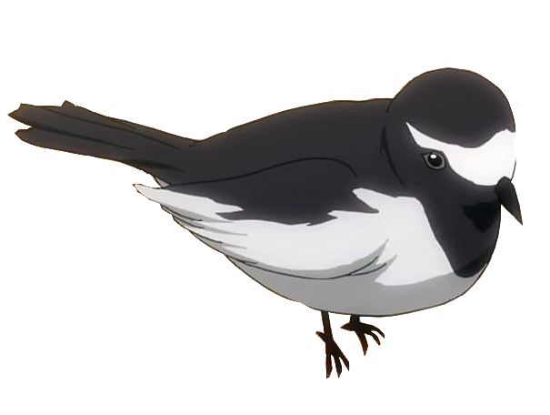 File:Wagtail.png
