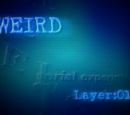Layer 01