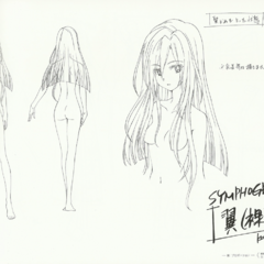 Tsubasa's Hair
