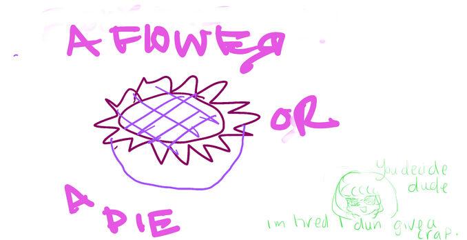 Flower or pie