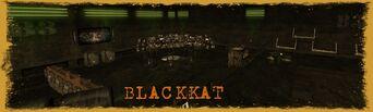 BeFunky Blackkat.jpg