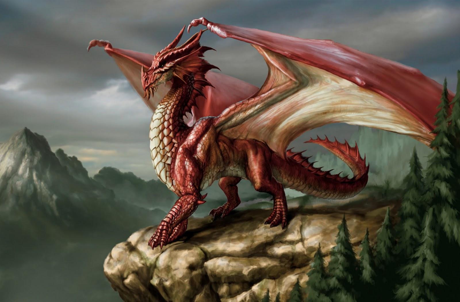 Dragon | Seraphina Wiki | Fandom powered by Wikia