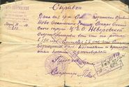 SofijaNeverovskaja-dok1a