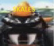 SkalesHead