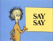 Say say