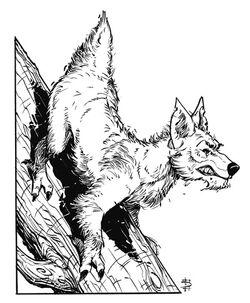 Climbdog.jpg