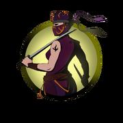 Ninja girl swords old